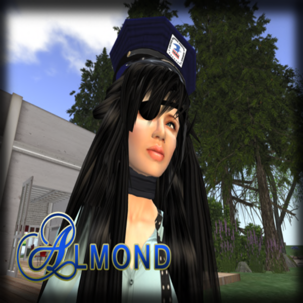 Almond Mode's Profile Image