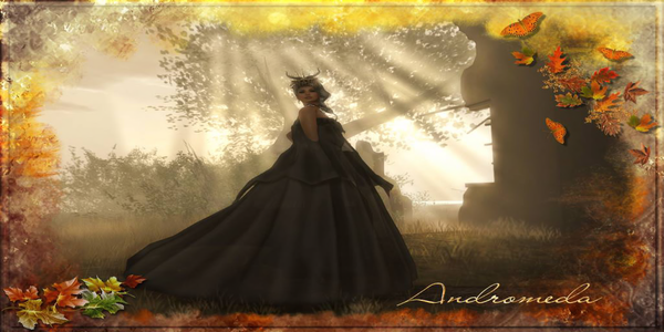 Andromeda Netizen's Profile Image