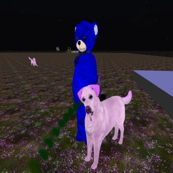 Ethereal Enchantment's Profile Image