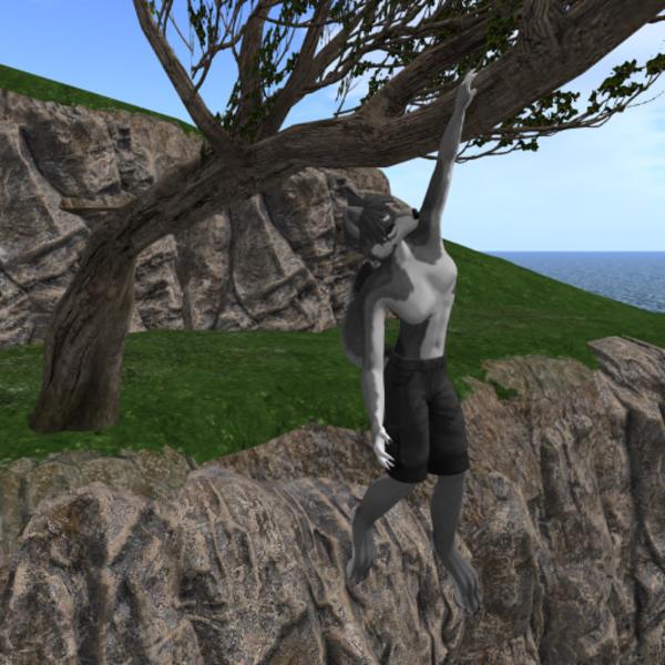 genghisbeer Resident's Profile Image