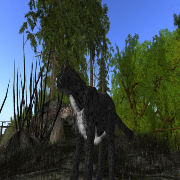 HuntressLarl Resident Profile Image