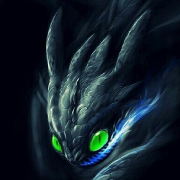 NightFurySL2001 Resident's Profile Image