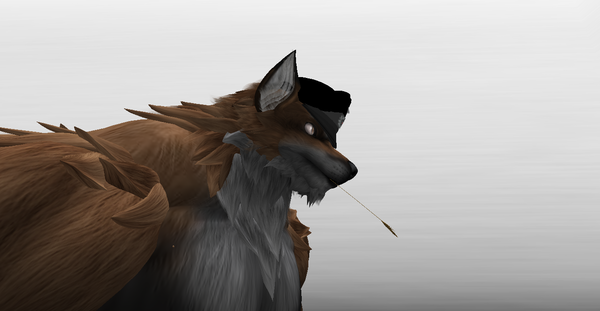 rex Soir's Profile Image