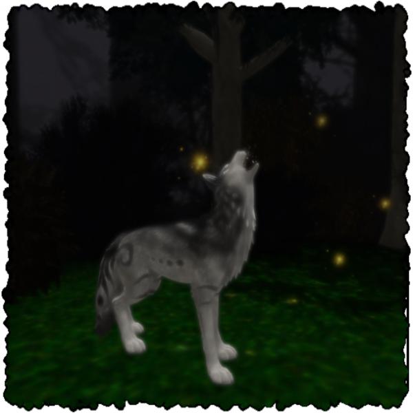 Suijin Tempest's Profile Image