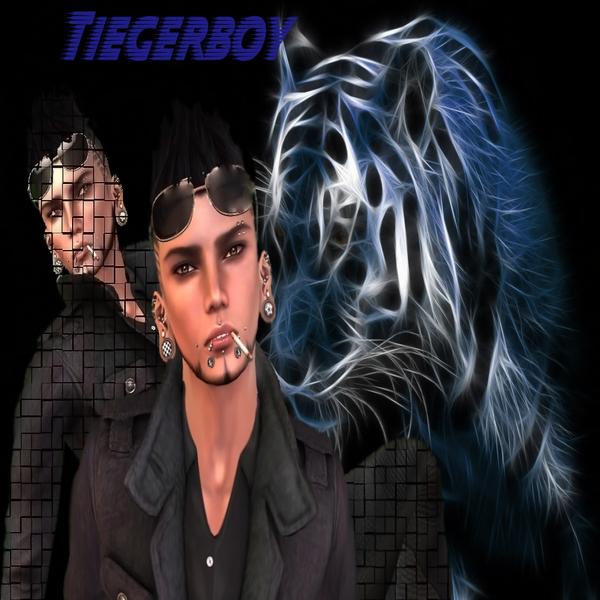 Tiegerboy Runner's Profile Image