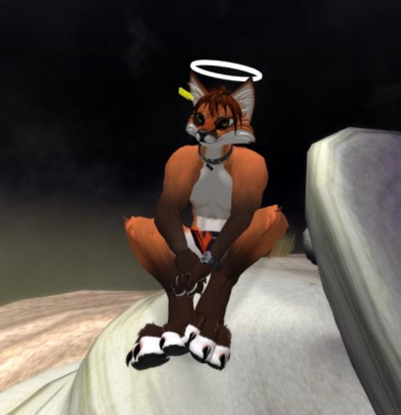 vexx Vita's Profile Image
