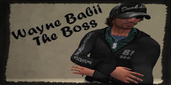 Wayne Babii's Profile Image