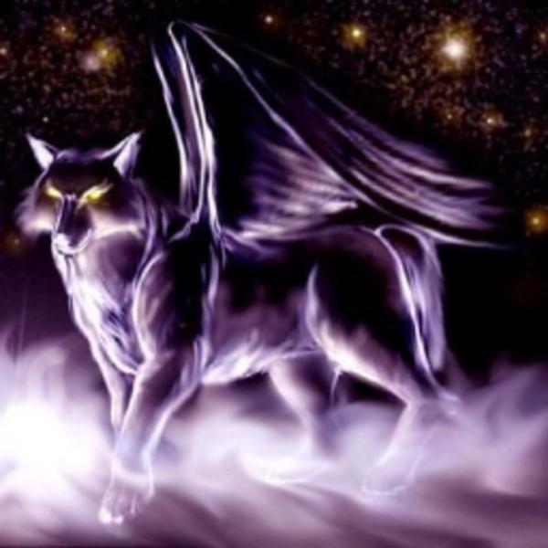wolfdayspring Resident's Profile Image