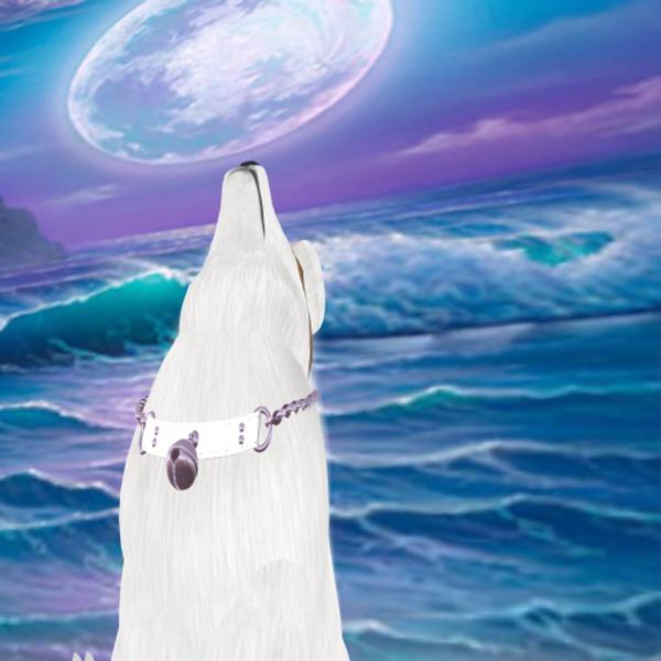 Wubsya Resident's Profile Image