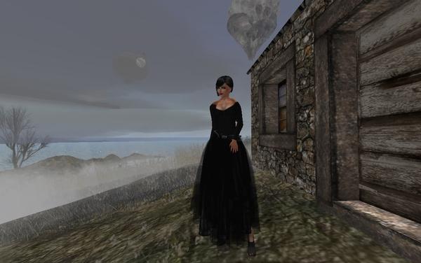 Zany Aura's Profile Image